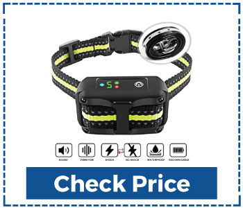 Best Anti Bark Collar For Small Dogs