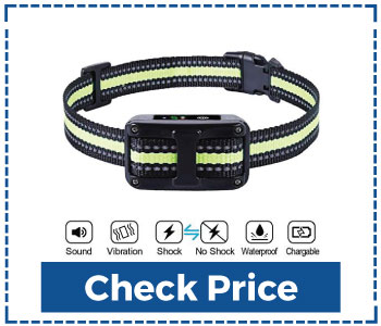 Small Dog Training Collar 5 Adjustable Sensitivity For Small Dogs