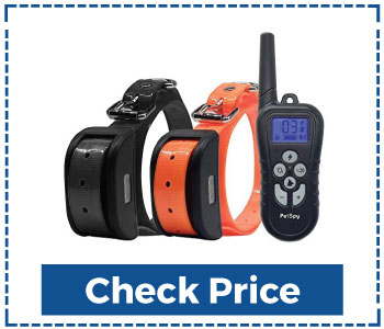 Dog Shock Training Collar with Remote for 2 Dogs