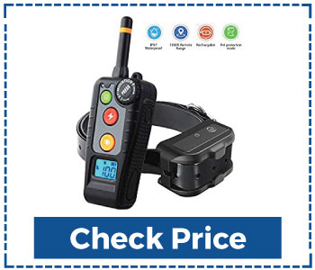 Newest Dog Shock Collar with Remote