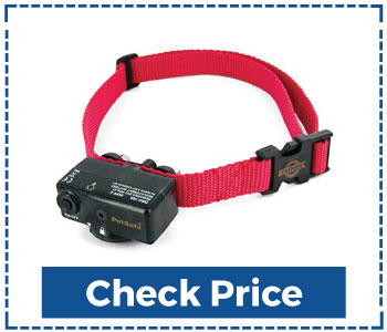 PetSafe Basic Bark Control Collar for Dogs
