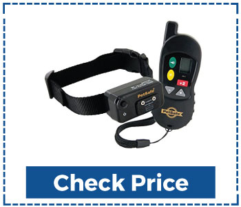 Big Dog Remote Training Collar