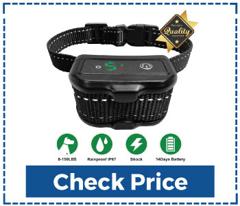 Rechargeable-Bark-Collar-For-Small-Dogs
