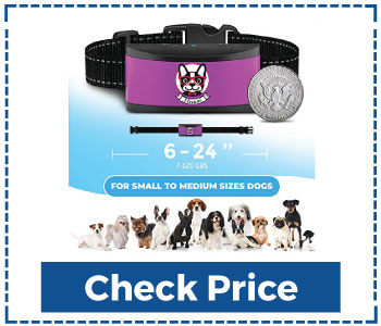 Small Dog Bark Collar Rechargeable Anti Barking Collar