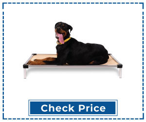 Chew-Proof-Elevated-Dog-Bed