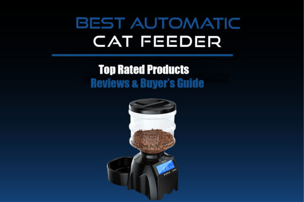 Best Automatic Cat Feeder