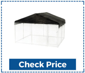 Lucky Outdoor Chain Link Kennel