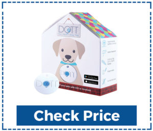 DOTT-The-Smart-Dog-Tag---Bluetooth-Tracker-For-Dogs-