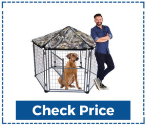 Neocraft-My-Pet-Chain-Link-Dog-Kennel-Lowes