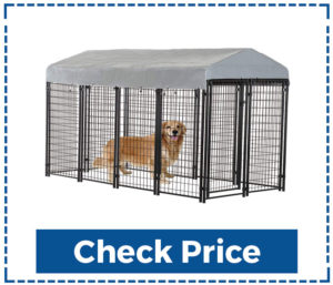 Outdoor Galvanized Metal Dog Kennel