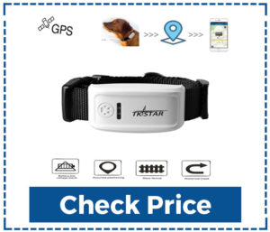 Pet-Tracker,Hangang-Pet-GPS-Tracker-For-Dog