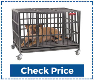 Proselect-Empire-Outdoor-Dog-Kennel-Flooring-Options