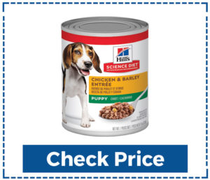 Hill's Science Best Canned Dog Food For Senior Dogs