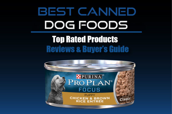 Canned Dog Foods