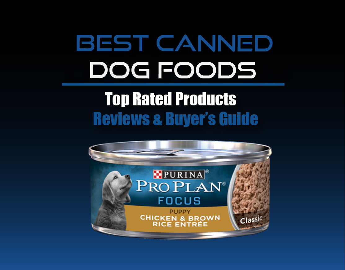 Best Canned Dog Food >> Best Canned Dog Foods For Puppies Senior Dogs