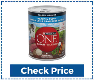 Purina-ONE-SmartBlend-purina-low-fat-dog--Food