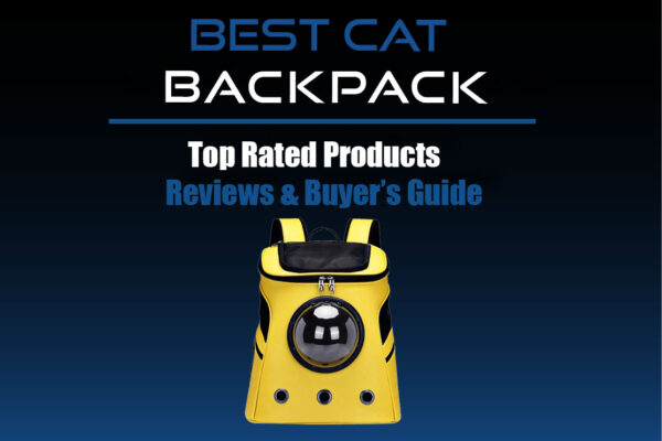best cat backpack