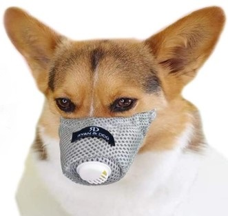 Linking Home Dog Respirator Muzzle