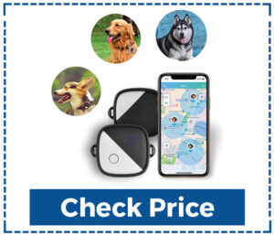Pet Fon Dog Gps Tracker no Monthly Fee Dog Tracking System