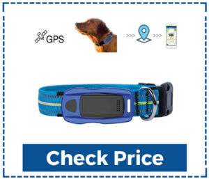Candora Pet Tracker GPS Dog Collar