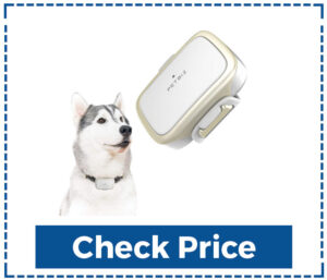 Petbiz GPS Tracker for Dogs Best Pet Trackers