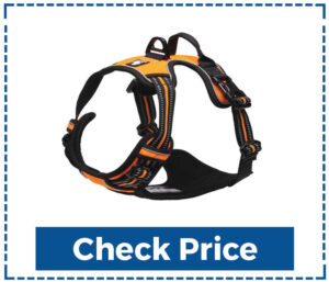 True Love Adjustable No Pull Dog Harness for Large Dogs