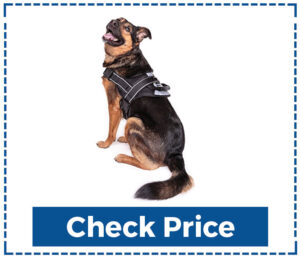 Friends Forever No-Pull Dog Harness Large Breed