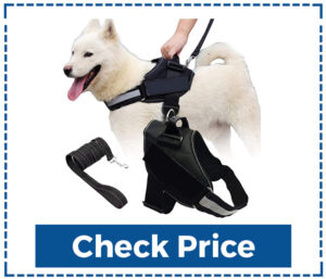 Scobuty Dog Vest Harness to Stop Pulling