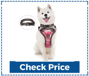 Winsee No Pull Pet Harnesses with Dog Collar
