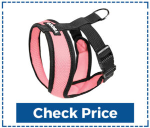 Gooby Dog Harness for Small Dogs
