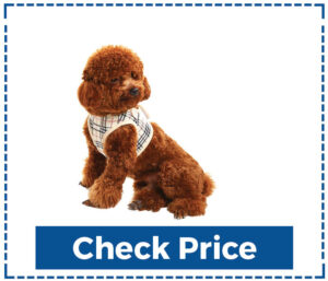 Soft Mesh Small Dog Harness with Leash