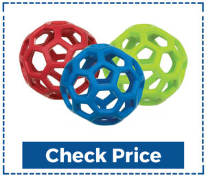 Jw Hol-EE Roller Treat Ball for Dogs