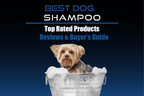 Best Shampoo for Dogs